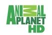 animalplanethd